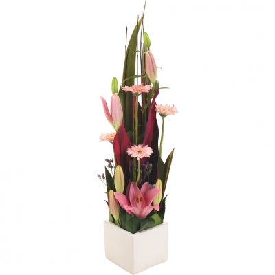 Florist white rock flowers to white rock cairns prices include white rock flower delivery delivery australia wide mightylinksfo